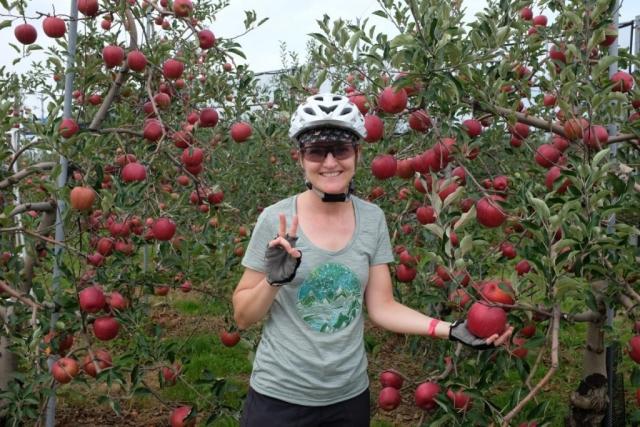 Riesige Äpfel
